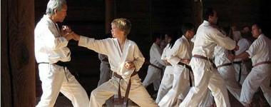 Budo vs Jiyu-Kumite